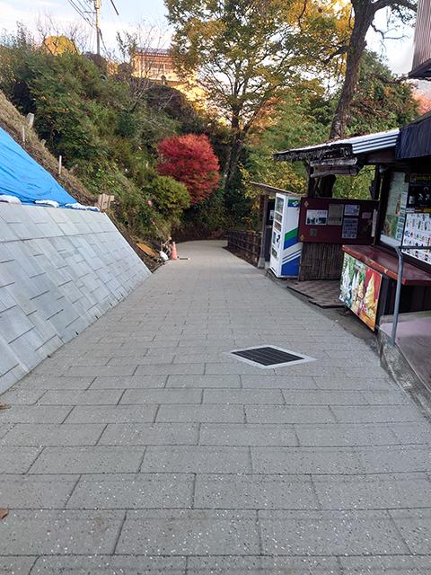 宮崎県高千穂町